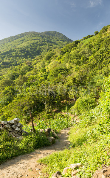 Volcano Hiking Trail Stock photo © THP