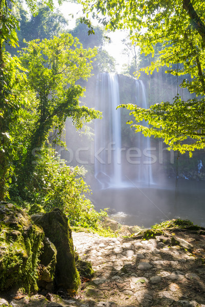 Misol Ha Waterfall Forest Path Stock photo © THP