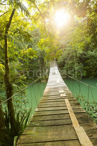 Ponte selva rio enforcamento aventura Foto stock © THP