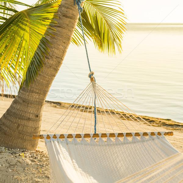 Peaceful Vacation Hammock Stock photo © THP