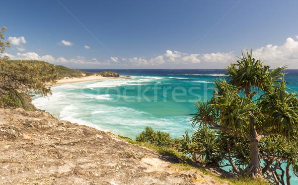 Queensland kustlijn palmen strand hemel water Stockfoto © THP