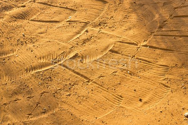 Raked Sand Patterns Stock photo © THP