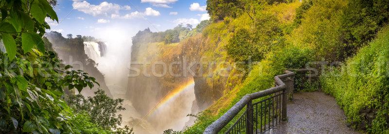 Victoria Falls Stock photo © THP