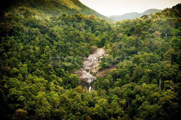 джунгли водопада удивительный зеленый лист фон Сток-фото © THP