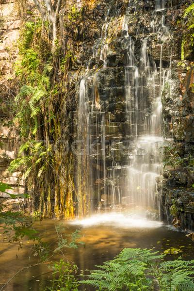Waterval Botswana een vijf watervallen parcours Stockfoto © THP