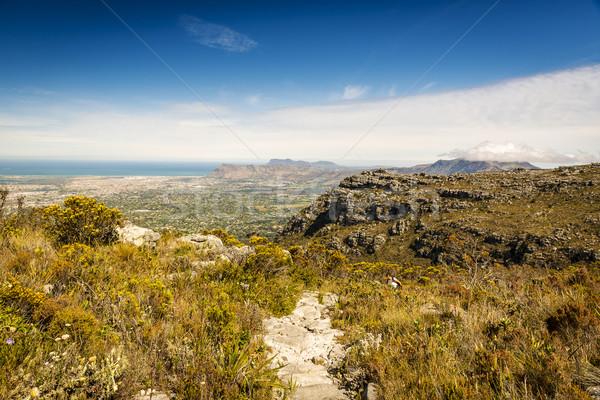 Randonnée table montagne randonneur suivre Le Cap Photo stock © THP