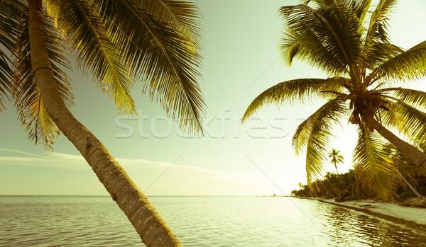 Vintage Tropical Beach Scene Stock photo © THP