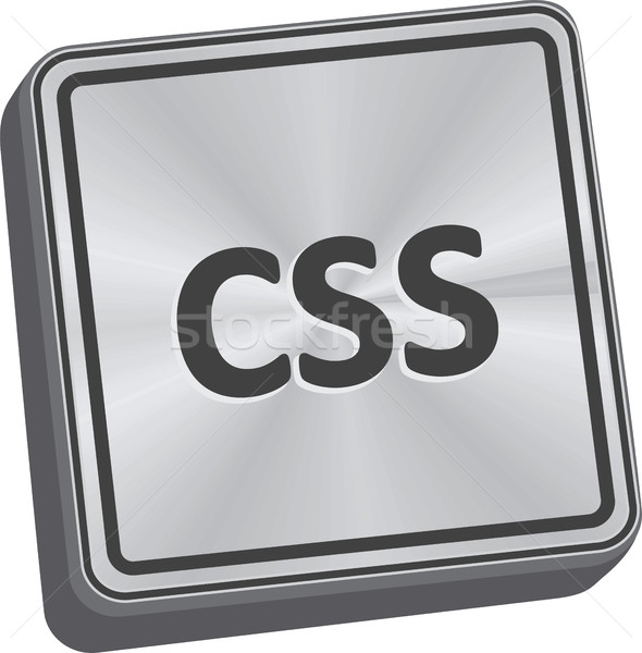CSS Button Stock photo © THP