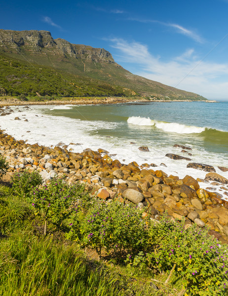 Coastline In South Africa Stock photo © THP