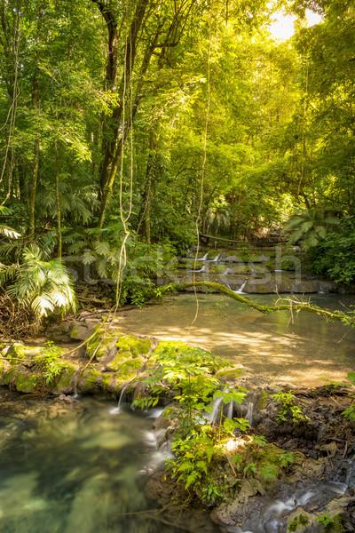 Мексика джунгли водопад чистой реке запустить Сток-фото © THP
