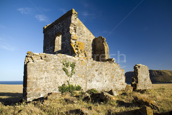 Convict Ruins Stock photo © THP