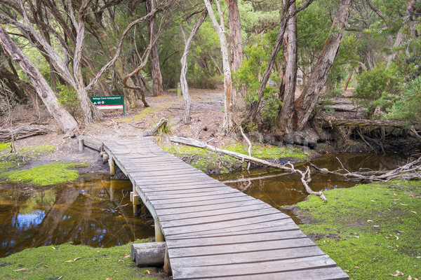 Footbridge Into Refuge Cove Campground Stock photo © THP