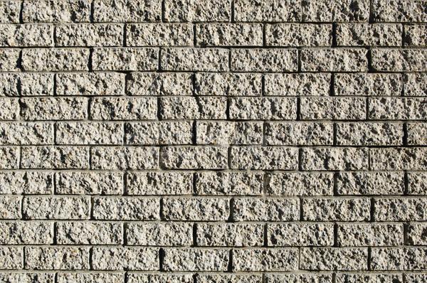 Grunge Wall Stock photo © THP