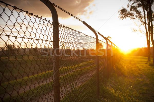 Sunset Fence Stock photo © THP