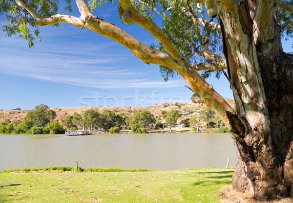 Murray River Boat Stock photo © THP
