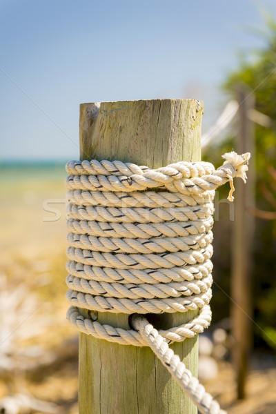 Marine Rope Stock photo © THP