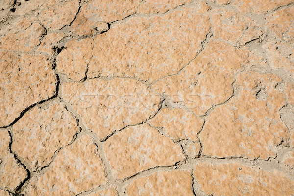 Cracking Earth Stock photo © THP