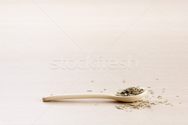 Tarragon Stock photo © THP