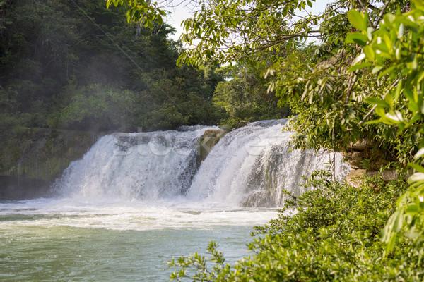 Vízesés Rio park Belize természetes Stock fotó © THP