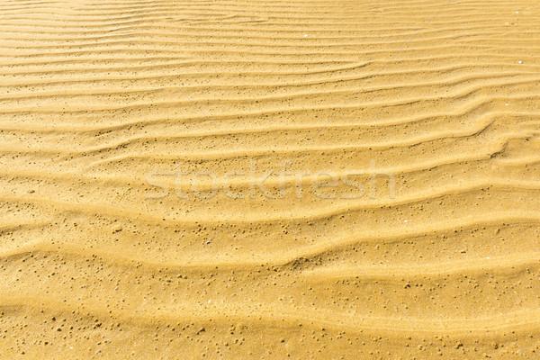 Kum dalgalanma doku model doğal plaj Stok fotoğraf © THP