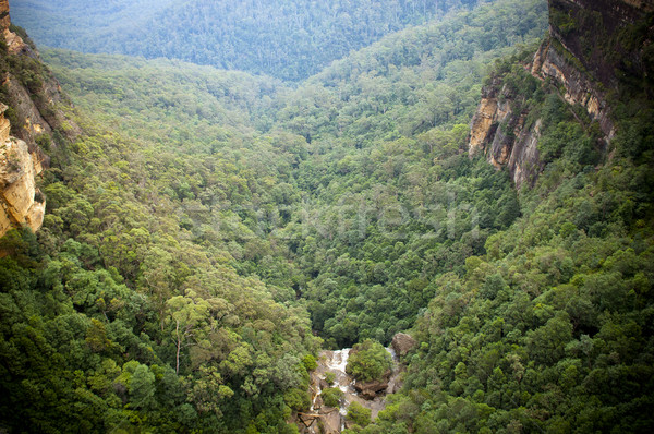 Waterfall Valley Stock photo © THP