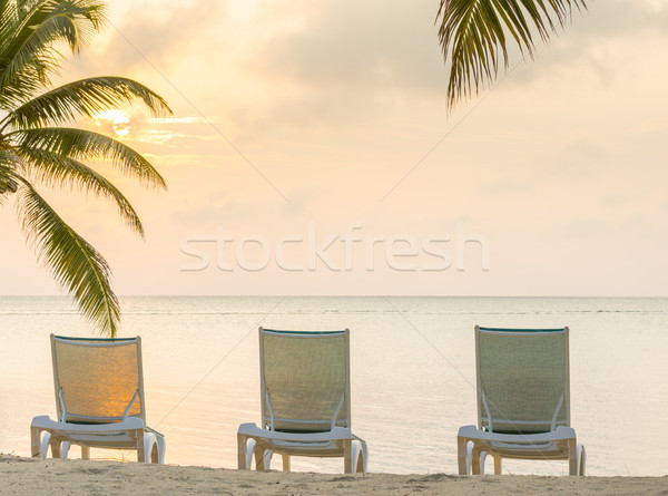 Tropical Beach Resort Stock photo © THP