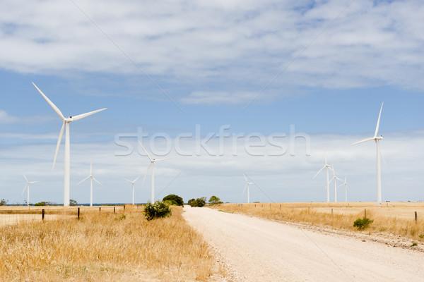 Farma wiatrowa wiejski Australia trawy słońce Zdjęcia stock © THP