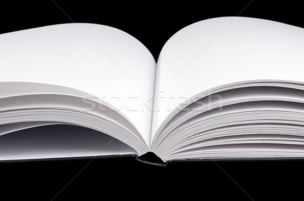 Book Detail Stock photo © THP