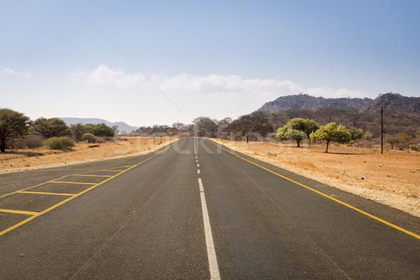 Botswana Road Stock photo © THP