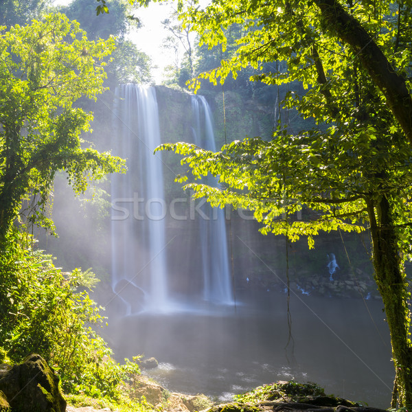 Misol Ha Waterfall Jungle Stock photo © THP