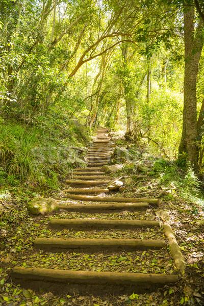 Spaceru szlak klatka schodowa tabeli górskich utwór Zdjęcia stock © THP