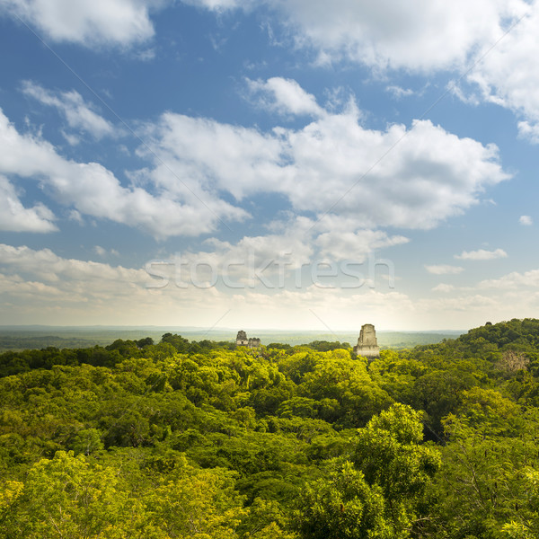 Tikal Guatemala Mayan Ruins Stock photo © THP