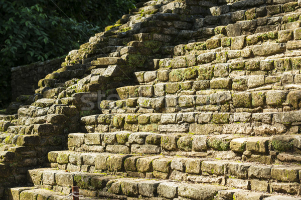 Ancient Mayan Stone Stairs Stock photo © THP
