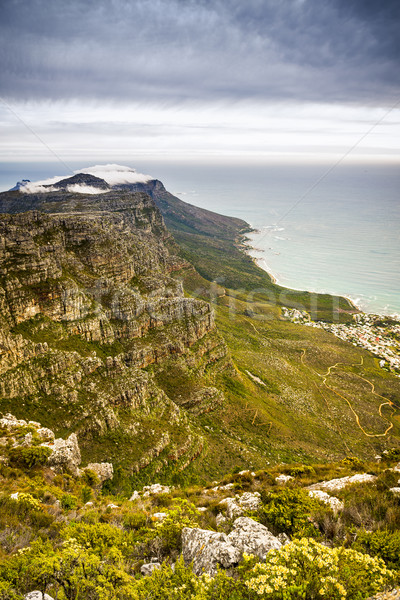 Twelve Apostles South Africa Stock photo © THP