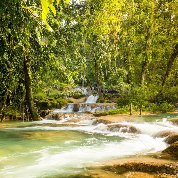 メキシコ 滝 自然 風景 青 川 ストックフォト © THP