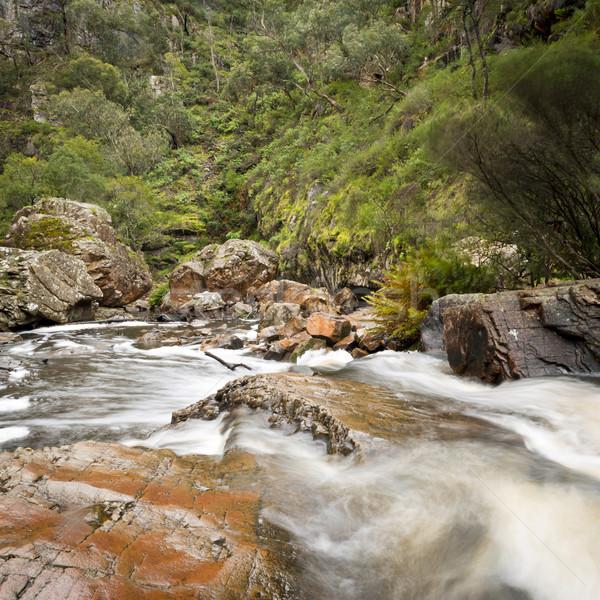 MacKenzie Falls, Grampians Stock photo © THP