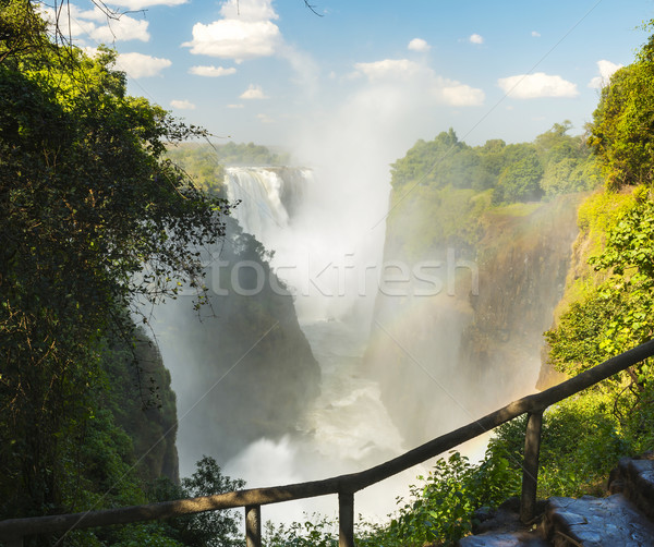 Victoria Falls Africa Stock photo © THP