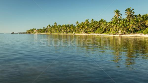 Karib tengerpart Belize trópusi uticél naplemente Stock fotó © THP