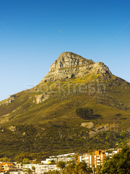 Signal Hill Over Cape Town, South Africa Stock photo © THP