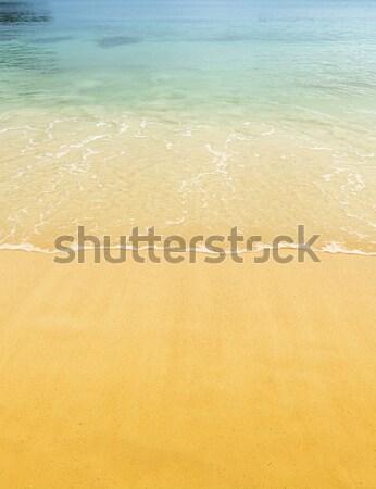 песчаный пляж пляж сцена тропические песок Сток-фото © THP