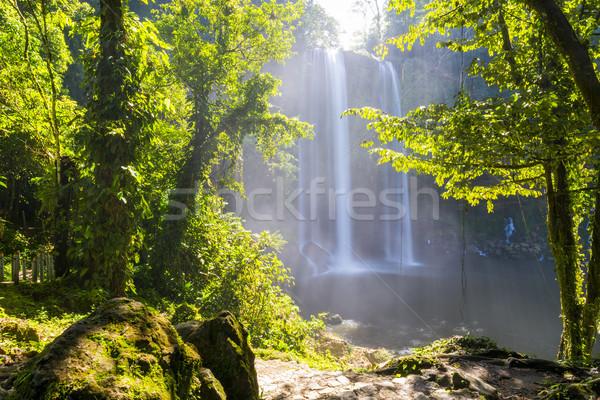 Waterval jungle pad boom natuur groene Stockfoto © THP