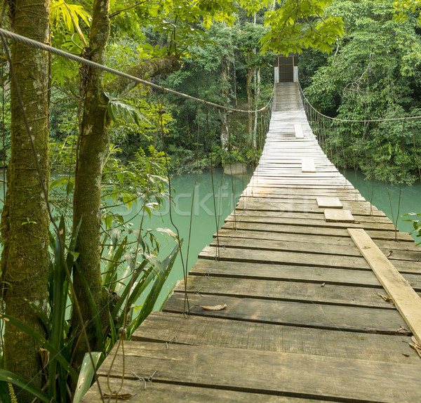 Híd Rio park Belize akasztás folyó Stock fotó © THP