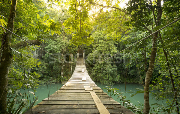 Foto stock: Forestales · puente · peatonal · río · Belice · agua
