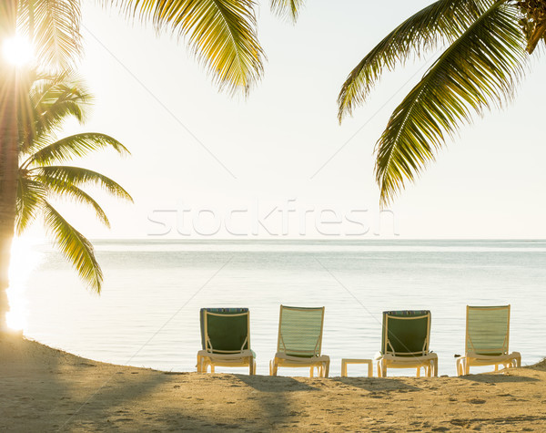 Sunset Over Tropical Beach Deckchairs Stock photo © THP