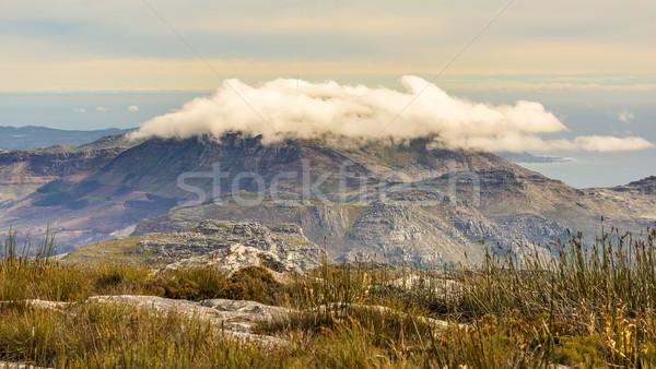 Foto stock: Tabela · montanha · cenário · cênico · parque · Cidade · do · Cabo