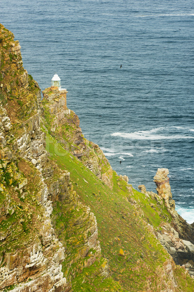 Punt vuurtoren South Africa tip schiereiland natuur Stockfoto © THP