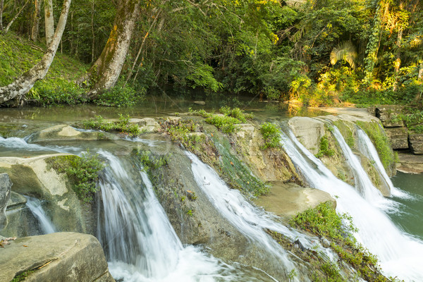 San Antonio Waterfall Cascades Belize Stock photo © THP