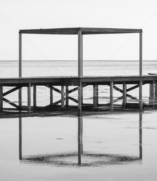 Siyah beyaz soyut ahşap yansıma su minimalizm Stok fotoğraf © THP