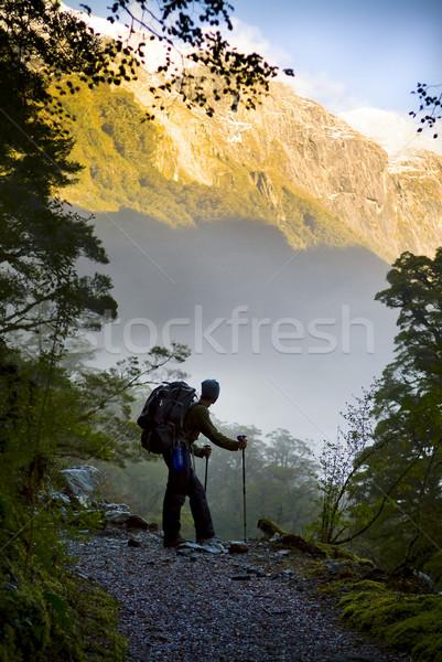 Asombroso senderismo caminante forestales árboles Foto stock © THP