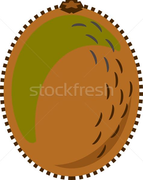 Kiwi vruchten vector geïsoleerd ontwerp stijl Stockfoto © THP